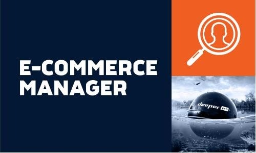 Image result for E Commerce Manager
